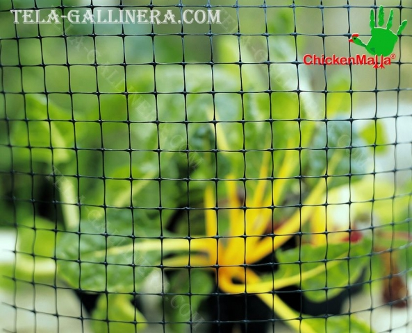 planta con uso de malla gallinera
